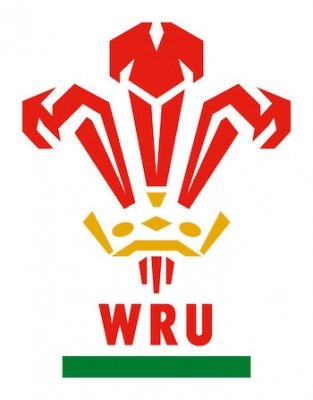 Liam Williams blow for Wales?
