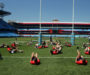 Fans' petition backs Lions tour to South Africa