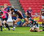 Bristol 17-3 Leicester: Moroni yellow gives Bears prowling space
