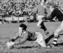 Hope the Lions do John Dawes proud | Shane Williams