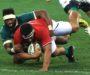 Player ratings – second Test: Siya Kolisi is the Boks' captain marvel